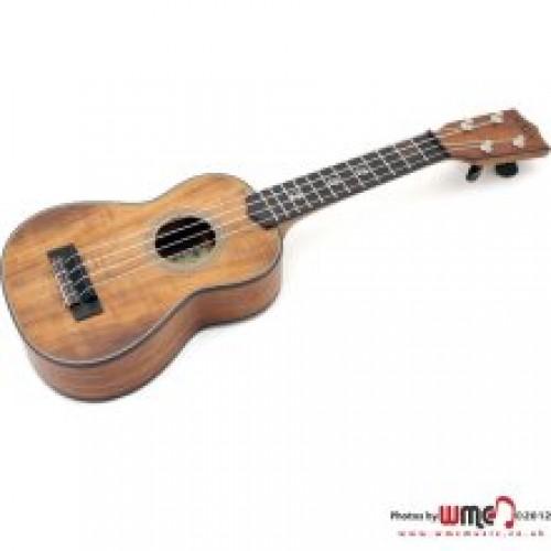 ukuleles for sale ukuleles for sale york ukuleles for sale england ukuleles for sale wales. Black Bedroom Furniture Sets. Home Design Ideas